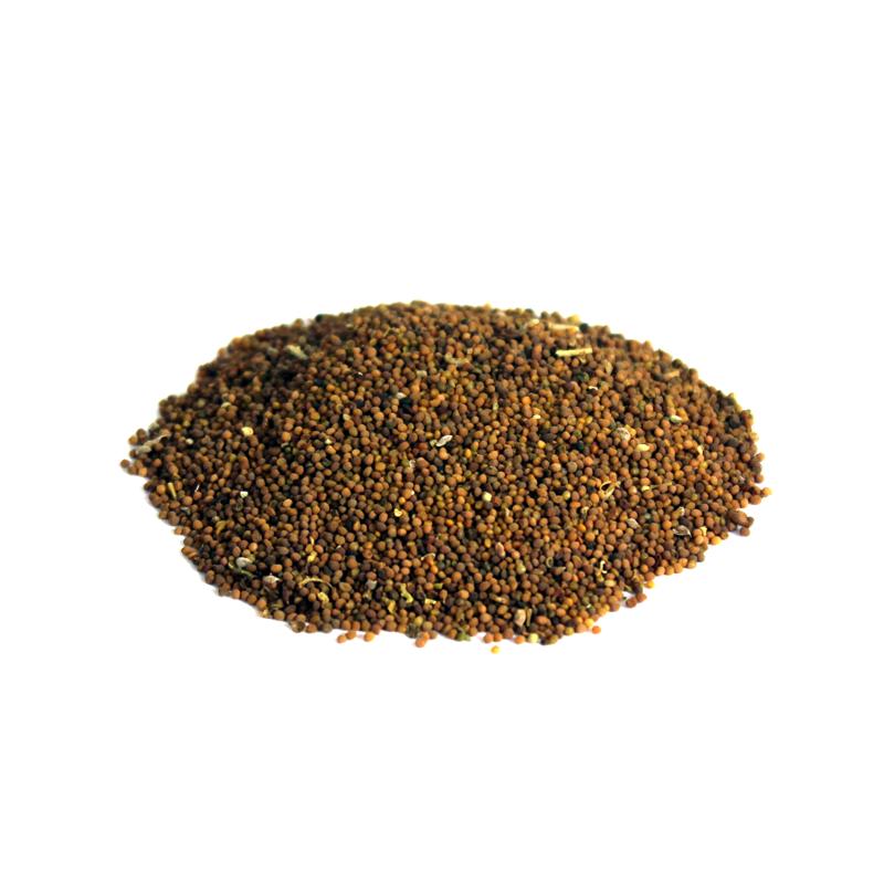 Dodder Seeds