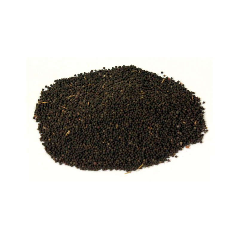 Mexican Poppy Seeds