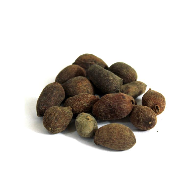 Jambolan Seeds