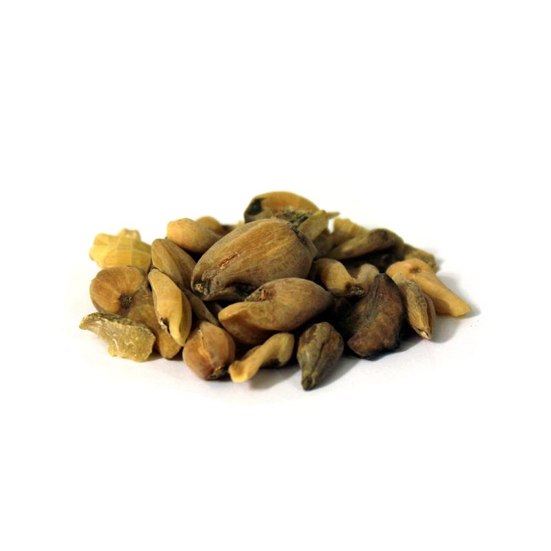 Colchicum Bitter