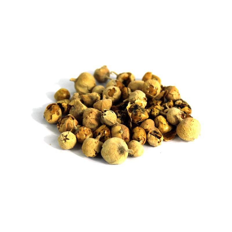 Dunal Seeds